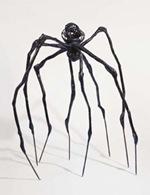 bourgeois-spider_Hubert Hamot Numartis