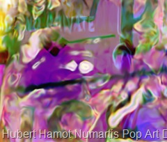 king-of-pop1 Hubert Hamot Numartis Pop Art Digital
