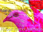 dove-over-yankee-stadium1 Hubert Hamot Numartis Pop Art Digital