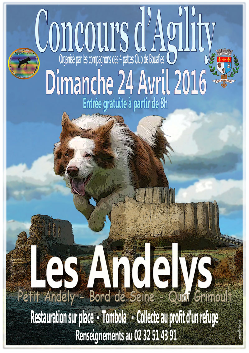 concours-agility-web